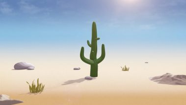 Picture of a Cactus for Aon